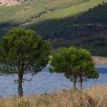 sierra-de-gata-NATURE